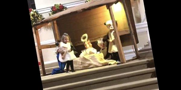 Ovelhinha rouba Jesus do presépio