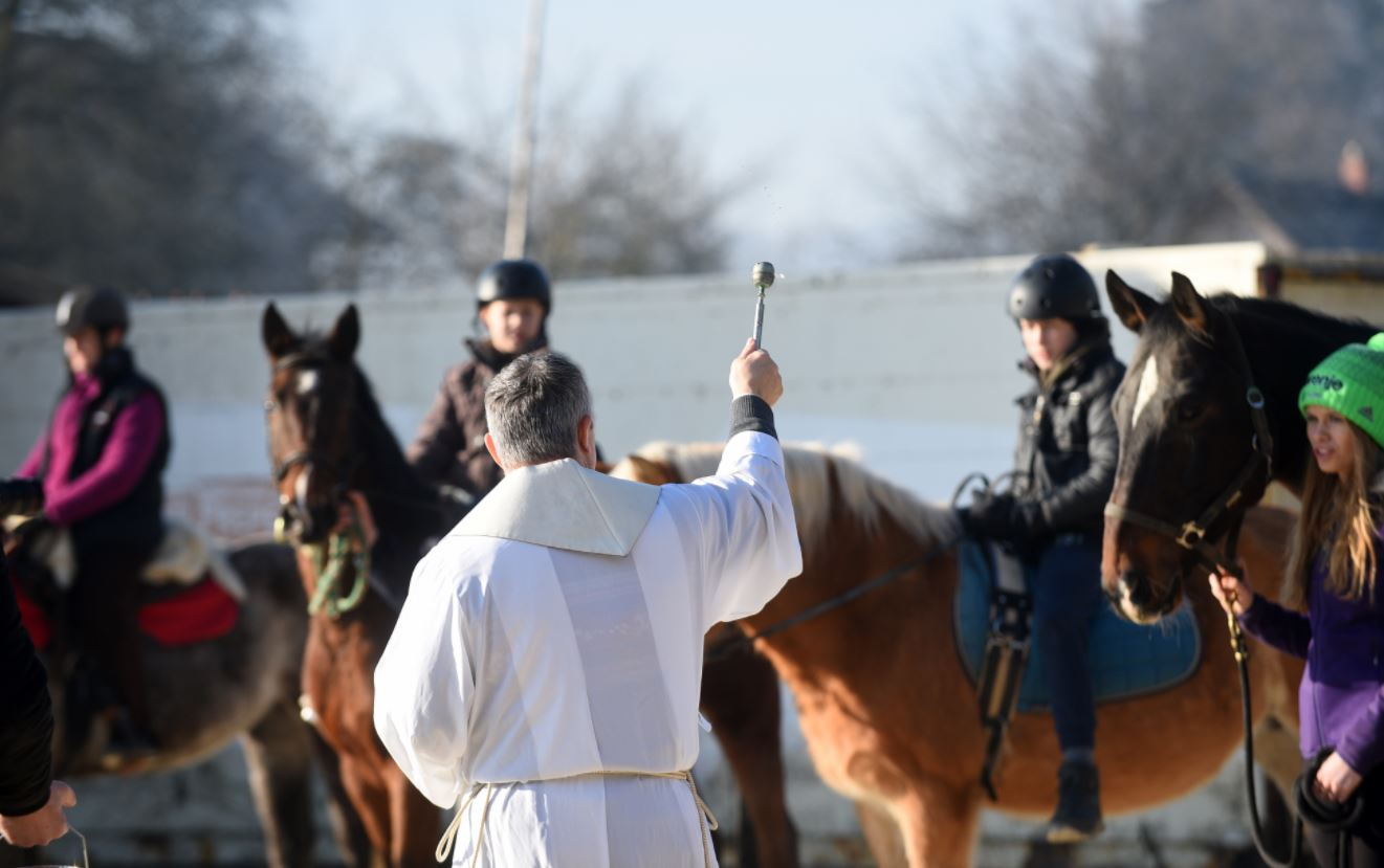 Priest blessing horses