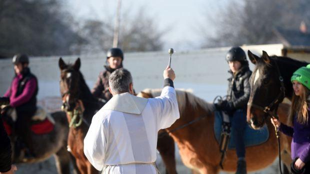 Priest blessing horses