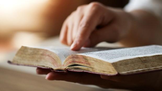 WOMAN,READING,SCRIPTURE