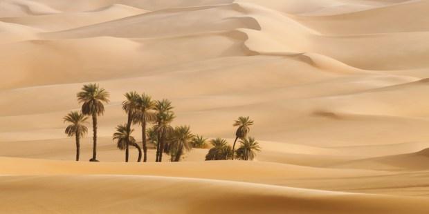 DUNES DESERT