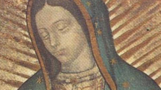 OUR LADY OF GUADALUPE SYMBOLS