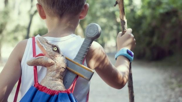CHILD, WOOD, ADVENTURE