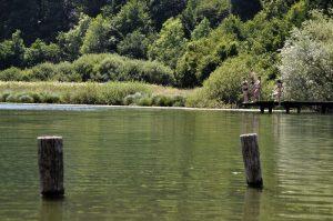 web 3 jezero podpeč