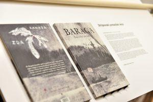 WEB 3 FRIDERIK BARAGA STRIP