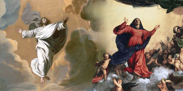 ascension AND ASSUMPTION